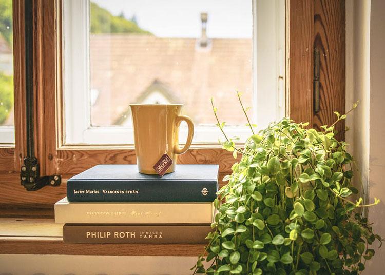 How To Prepare Chaga Tea At Home