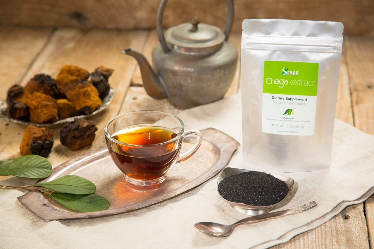 how to make chaga extract powder