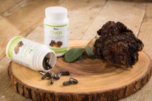 Siberian Chaga Extract Dietary Supplement