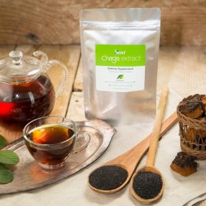Siberian Chaga Extract Powder