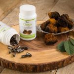 Does Chaga Need to Be Certified Organic?