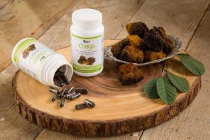 Chaga Extract Dietary Supplement