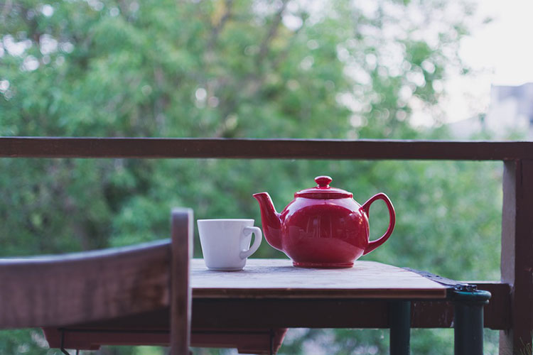 Chaga Tea How Much Should You Drink