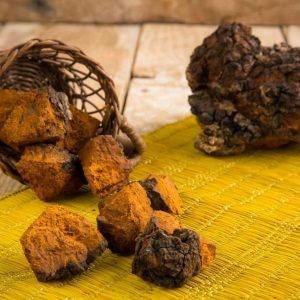 Chaga Raw Pieces
